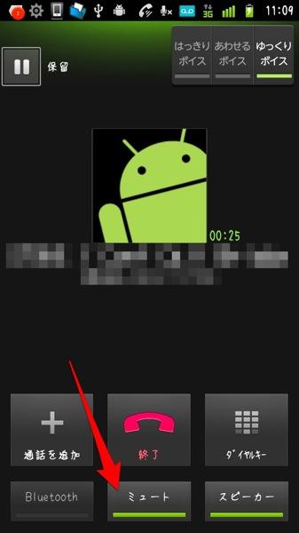 F 05D phone mute